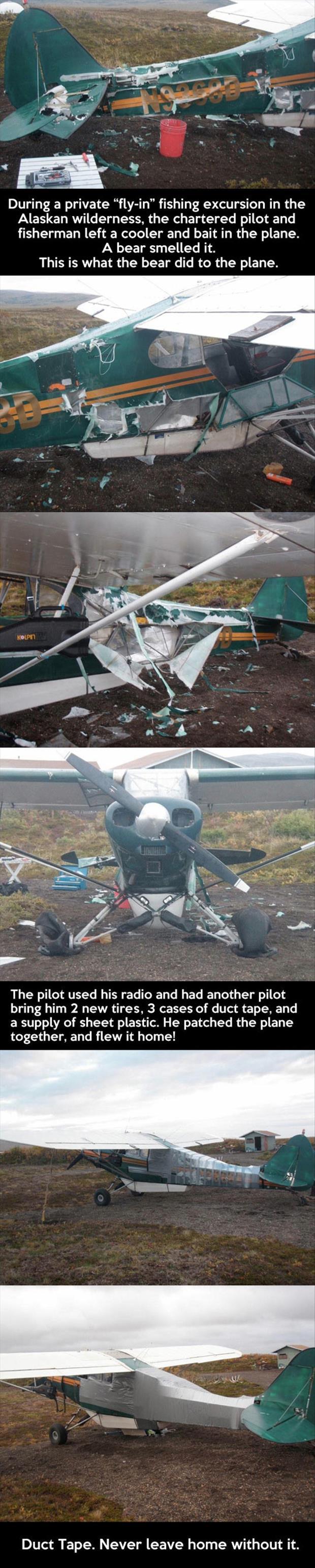Bear, plane, duct tape