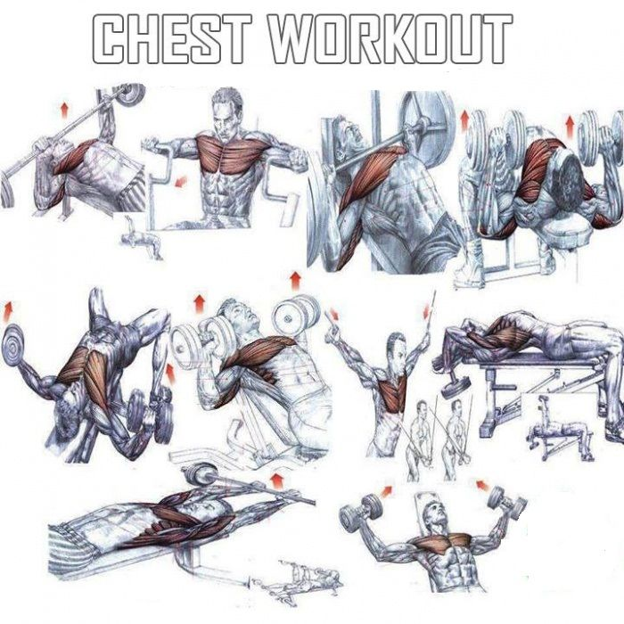 Every Bodybuilder Wants To Build Chest Muscles Period Many Inexperienced Bodybuilders Will Work