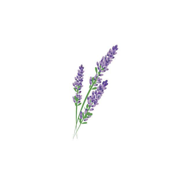 1 49 2x Waterproof Temporary Fake Tattoo Stickers Cute Purple Lavender Flowers Design Ebay Fashion Purple Flower Tattoos Lilac Tattoo Lavender Tattoo