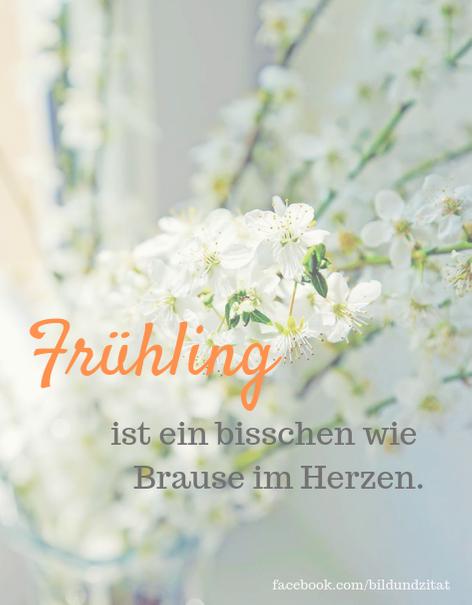 Photo of Über den Frühling