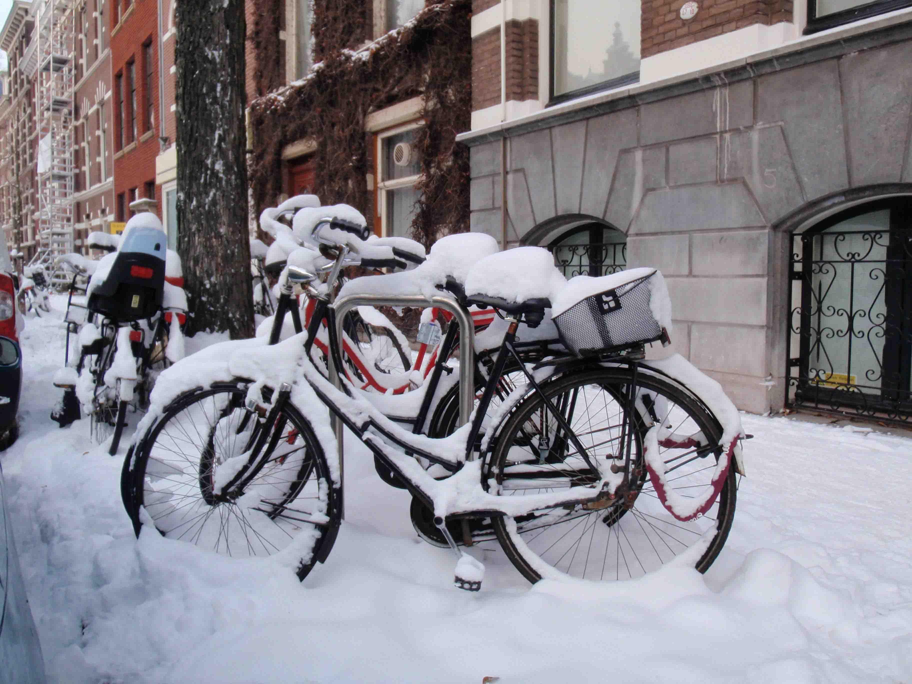 My Bike In The Hague Bike Empire Pinterest Netherlands