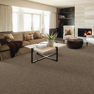 40+ Living room carpet home depot ideas in 2021