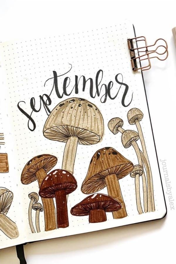 45+ Best September Monthly Cover Ideas For 2020 - Crazy Laura