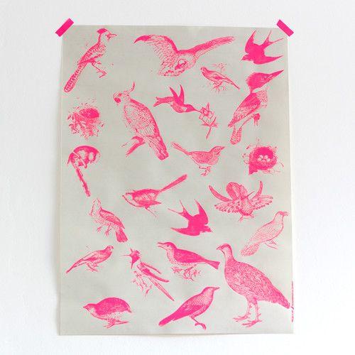 FLUOR BIRDS - Print by Frohstoff