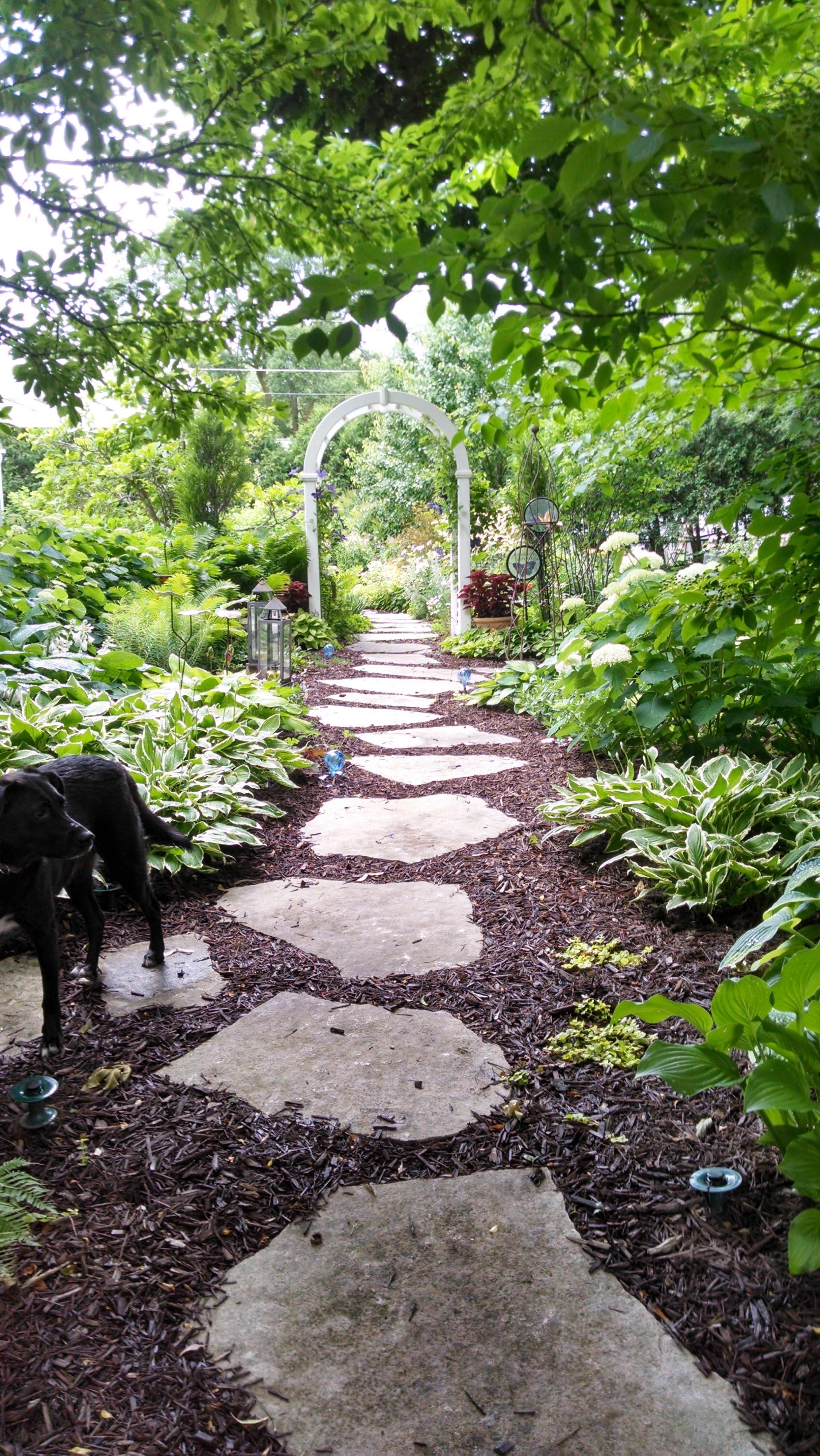 Flagstone pathway | Pathway landscaping, Front yard ...