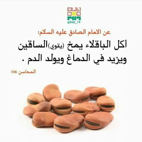 Pin By Najat Almoosa On اطعمة في احديث اهل البيت عليه السلام Food Facts Health Food Food Goals