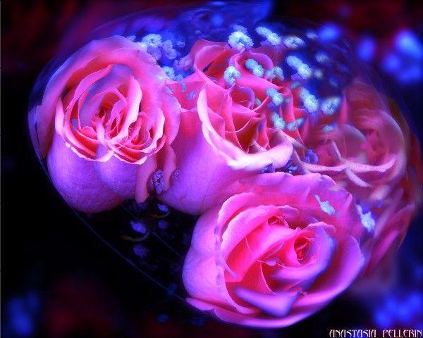 rosemistsphere