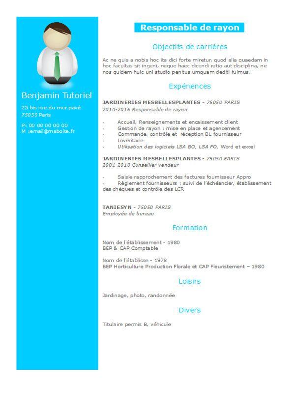 exemple de cv gratuit en 2 colonnes  ce curriculum vitae  u0026 39 bleu ciel u0026 39  dynamique mettra en valeur