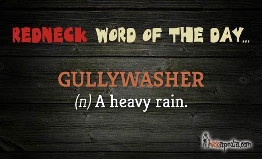 Gulleywasher - http://hickapedia.com/dictionary/item/gulleywashwer.html  #redneck #hillbilly #hick #dictionary #vocabulary #southern #Hickapedia #language  #reference
