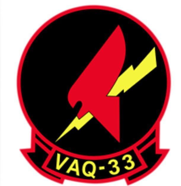 VAQ-33 Firebird Squadron Patch | Whales | Military insignia