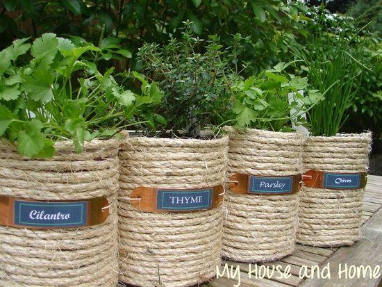 Beautiful Diy/cans/herb Garden   Google Search