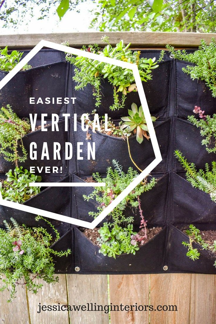 Easiest Vertical Garden Ever is part of Vertical garden Living Room - Need to add interest to a fence or outdoor wall  A vertical garden might be perfect! This project was so simple my 6yearold did it and wrote the tutorial