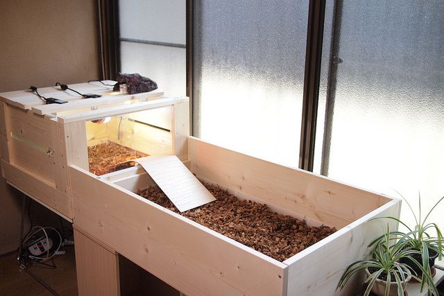Diyデビュー リクガメの木製ケージを自作してみたよ リクガメ リクガメ ケージ 亀の家