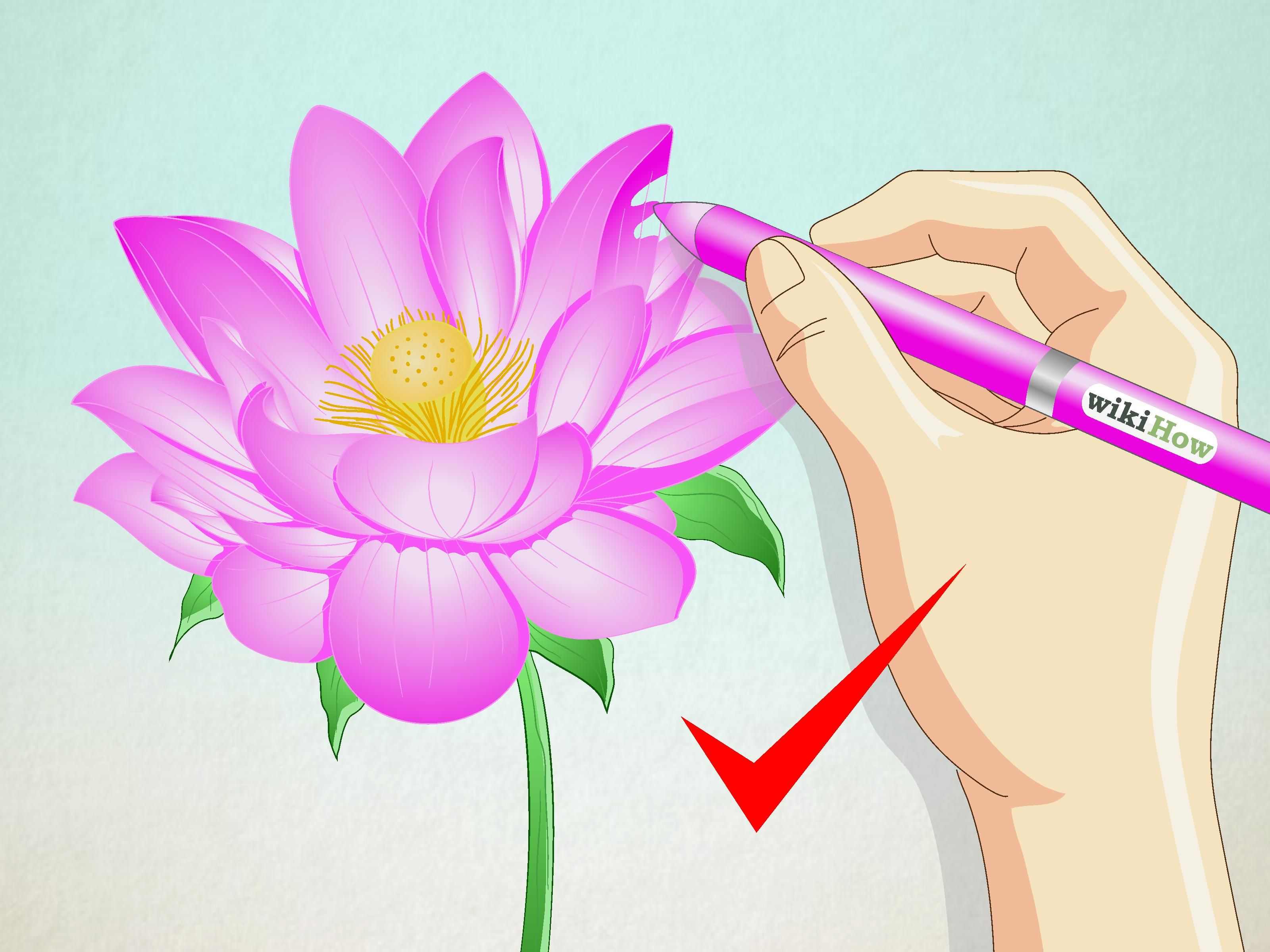 Draw a Lotus Flower Flower drawing tutorials, Flower