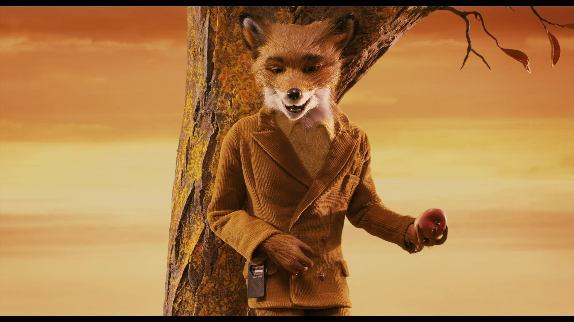 Fantastic Mr Fox Fantastic Mr Fox Wes Anderson Characters Temple Of Light