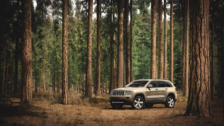 Jeep Grand Cherokee Overland Looking At Home In The Woods In White Gold Jeep Grand Cherokee Grand Cherokee Overland Jeep