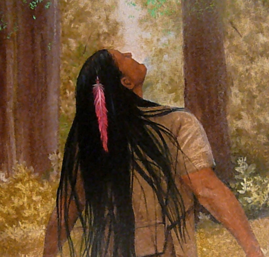 native american vision quest A vision quest is an ancient rite of passage from native american cultures,  where people take a time out to connect, in solitude, with the natural.