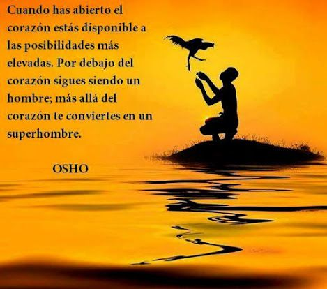 Osho Castellano 15 Frases Osho Frases Y Palabras