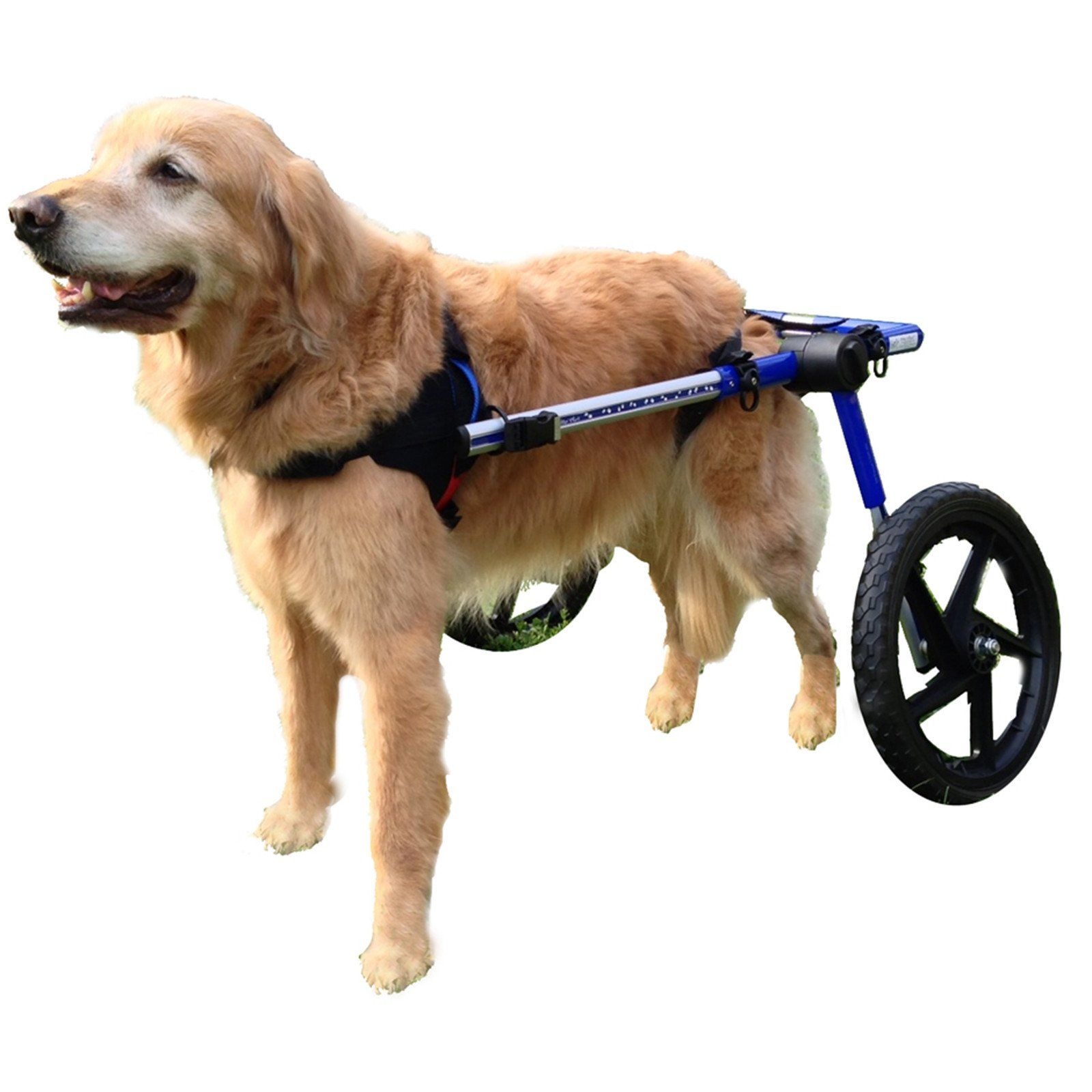 Walkin' Wheels dog wheelchair enables your dog or other pet to run and play again; get the exercise he or she needs, and live a happy, healthy life.