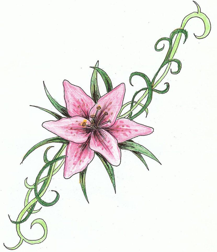 Tiger Lily Tattoo Designs Tattoo Lily Of The Valley ...