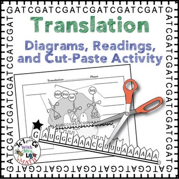Translation Diagrams Readings And Activity Packet Diagram
