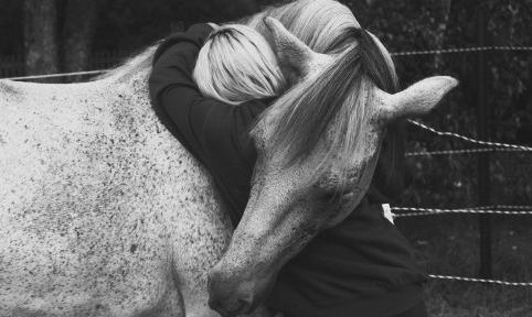 hugs from a friend