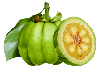 News – State Nutmeg Nutrition