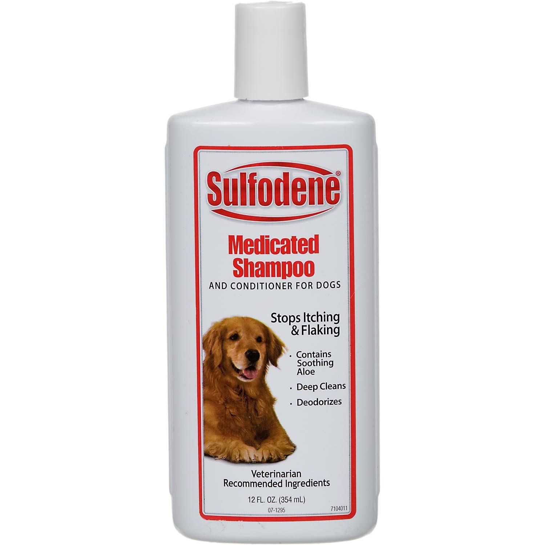 Sulfodene Medicated Dog Shampoo Conditioner Medicated Dog Shampoo Dog Shampoo Pet Shampoo