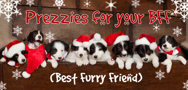 Don't forget to treat your pet this Christmas!
