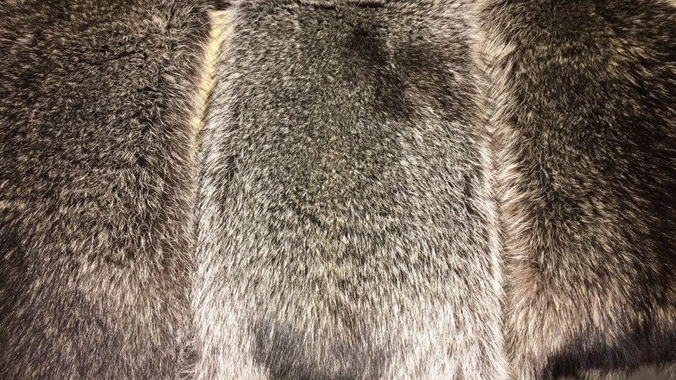 How To Professionally Tan A Pelt Pelt, Animal hide