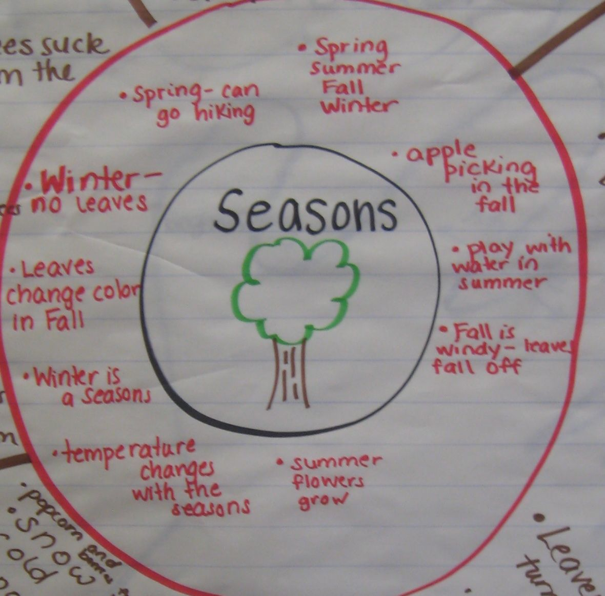 Circle Map - Seasons Mind Mapping 2nd Grade Activities