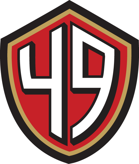 up for sale are the new nfl team logo emblems, they can be stuck