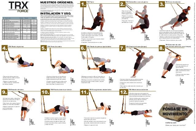 photograph relating to Printable Trx Workout named printable trx physical exercises TRX Trx ejercicios, Tabla de