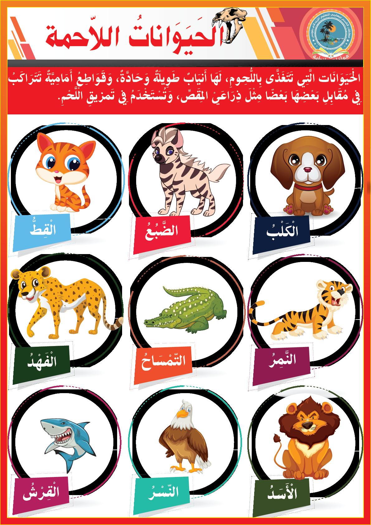 الحيوانات اللاحمة Learning Arabic Arabic Kids Arabic Alphabet