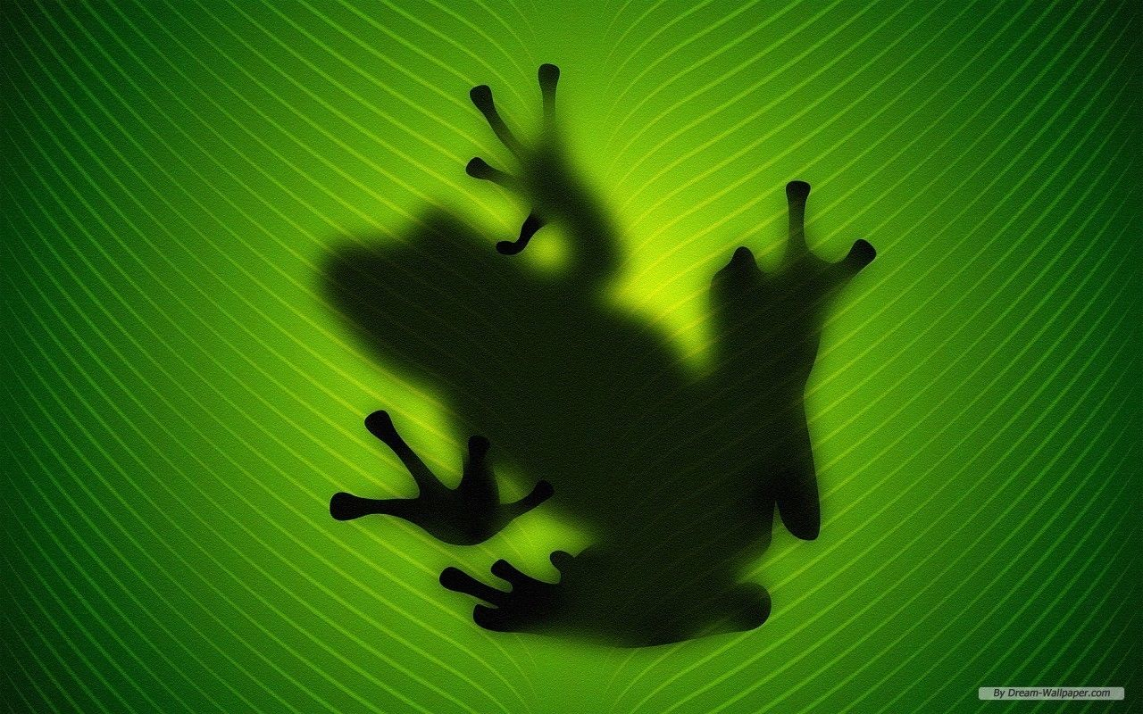 Frogs Wallpaper Frog Wallpaper Frog Wallpaper Frog Shadow Images