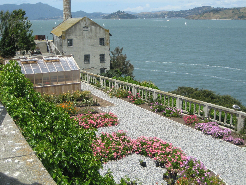 Alcatraz...