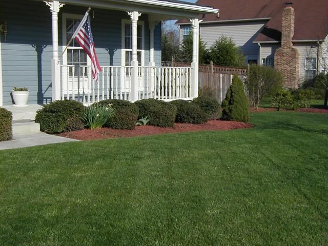 www boxwood front yard shrubs picturesquely www. Black Bedroom Furniture Sets. Home Design Ideas