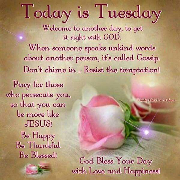 Today Is Tuesday Day Good Morning Tuesday Tuesday Quotes Tuesday