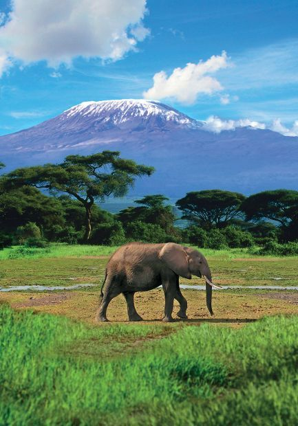 "MOUNT KILIMANJARO, AMBROSELI NATIONAL PARK, KENYA ""There"