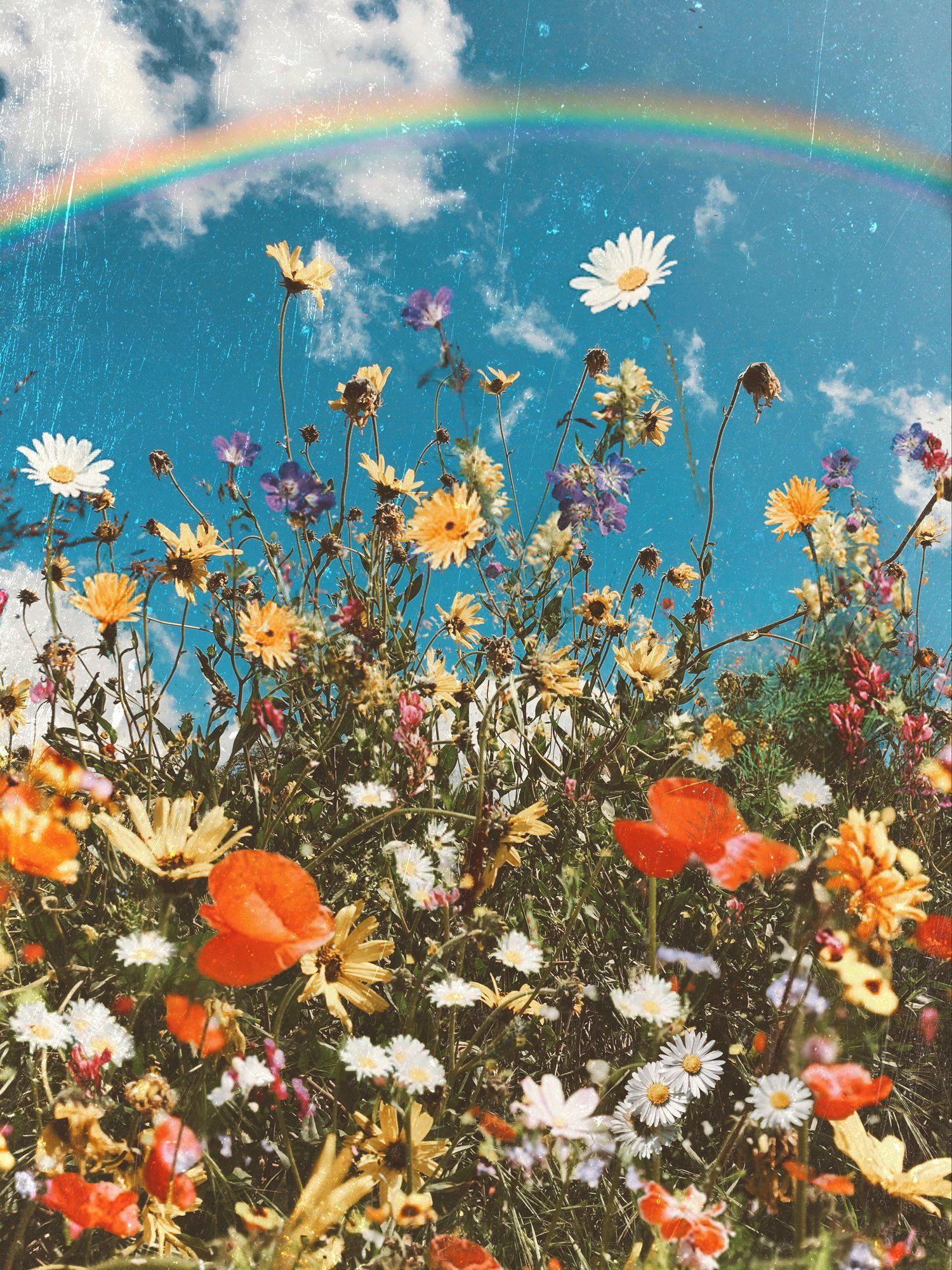 Fleurs Spring aesthetic, Sunflower wallpaper, Flower