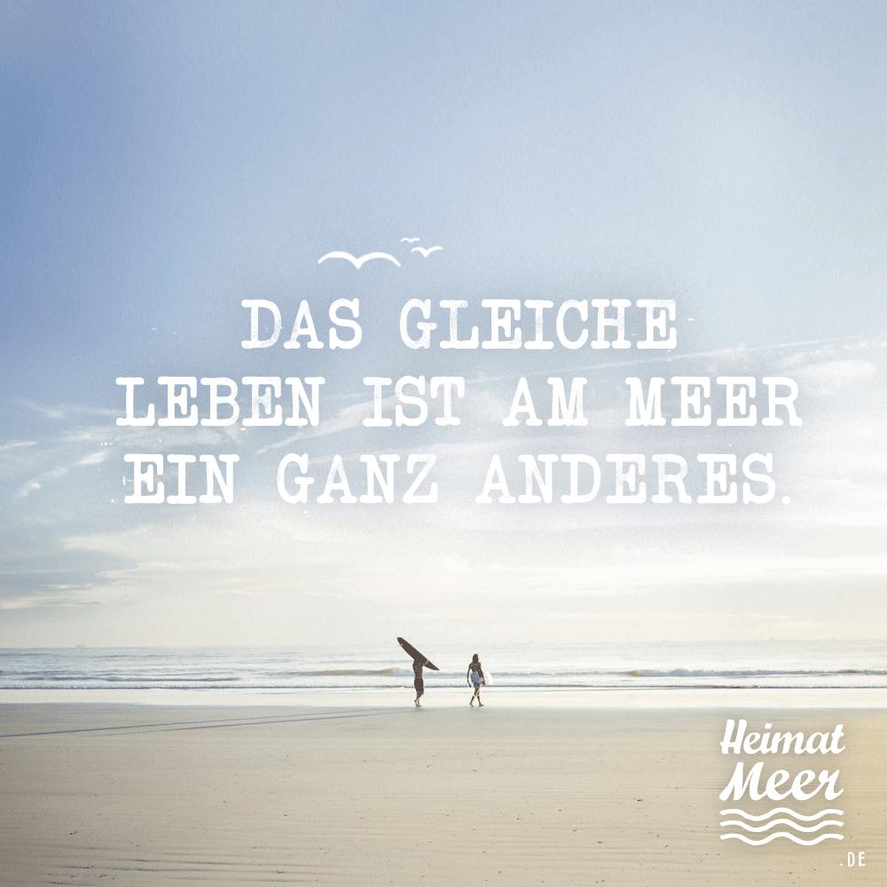 LEBEN am MEER / Mee(h)r vom Meer >>