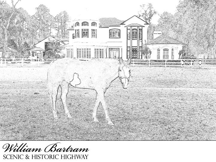 william bartram scenic and historic highway coloring page