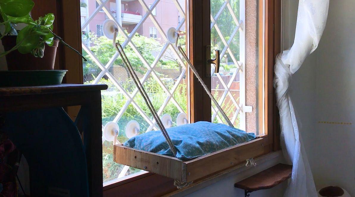 A diy cat window perch cat window perch window perch