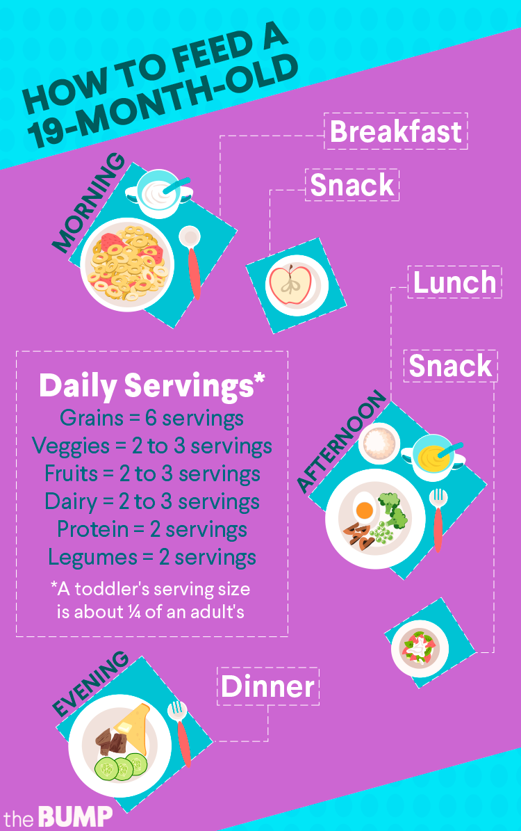 Baby Month By Month Baby Milestones Development Baby Month By Month 19 Month Old Feeding Toddlers