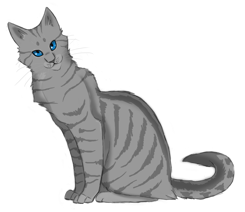 Warrior Cats First Arc Gray She Cat