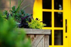Happy Front Door:)