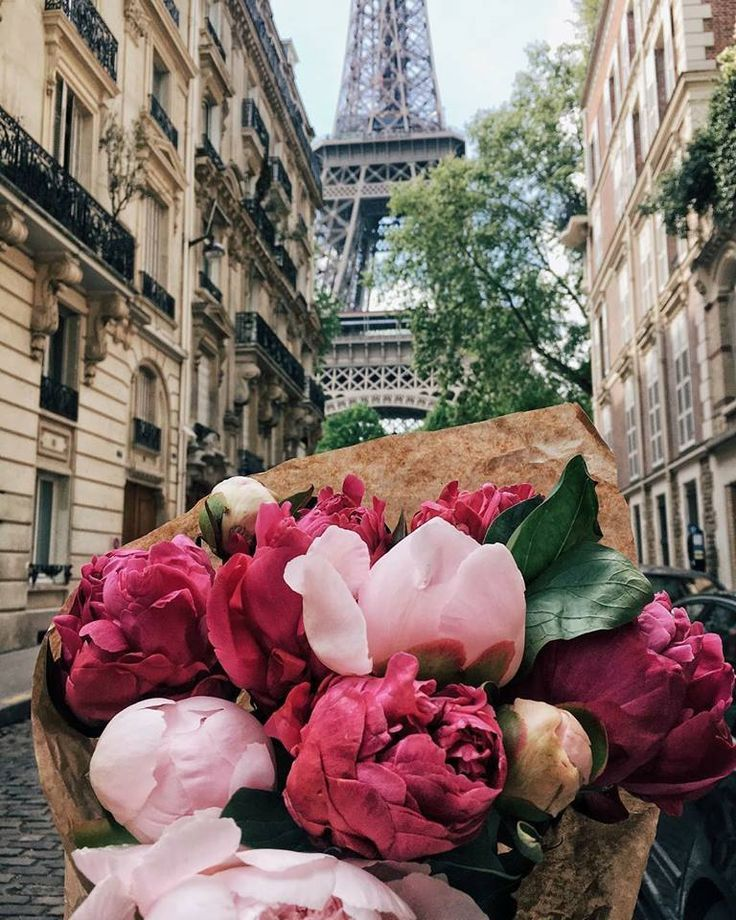 Beautiful peonies in Paris France. #brautblume