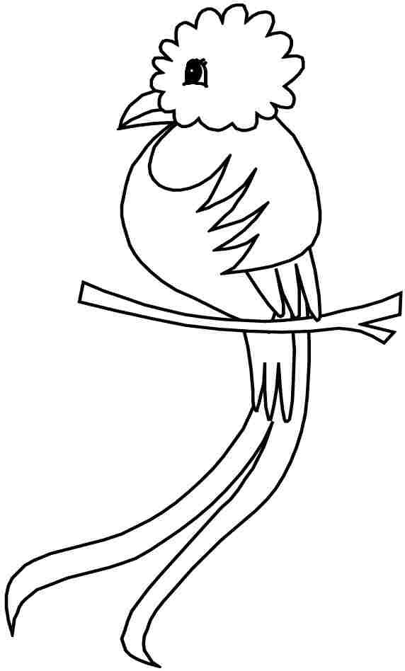 Animal Birds Coloring Pages Printable Free For Kids Girls 7239