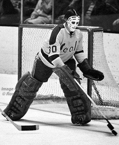 California Golden Seals Goaltending History Chris Worthy Goalie Mask Goalie Hockey Fans
