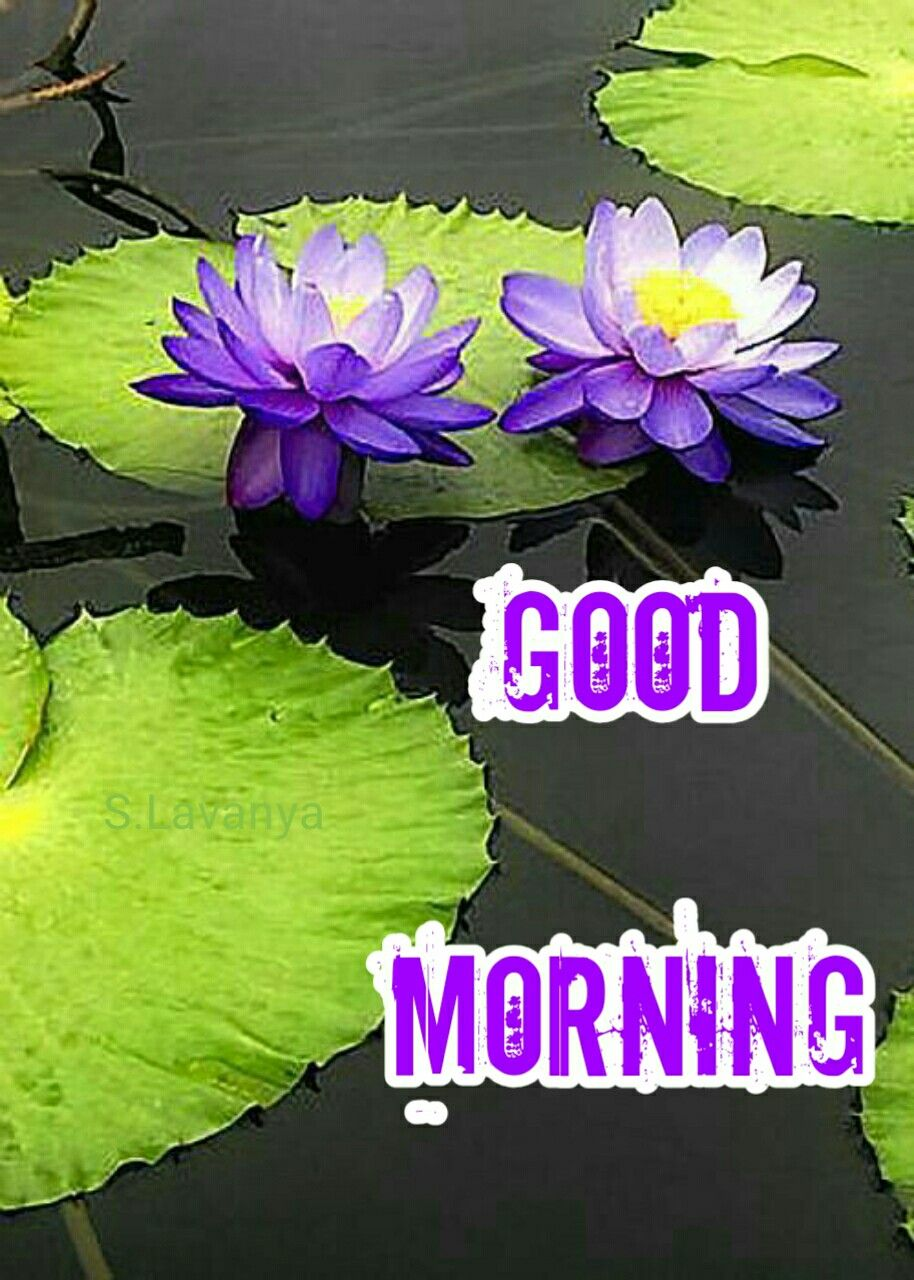 2019 good morning S Lavanya | S lavanya udan Good morning | Latest